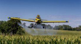 Ξεκινούν αεροψεκασμοί για τα κουνούπια στη δυτική Θεσσαλονίκη