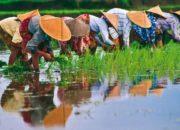 Βιετνάμ: Ένας άγνωστος παράδεισος
