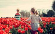 Οι πολλαπλές νοημοσύνες των παιδιών: Πώς ανακαλύπτονται και καλλιεργούνται