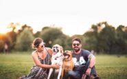 Ο σκύλος σας επικοινωνεί μαζί σας και σας το δείχνει
