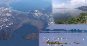 """""""Περπατώ και γνωρίζω: Το εθνικό πάρκο Υγροτόπων Λιμνών Κορώνειας – Βόλβης και Μακεδονικών Τεμπών """""""