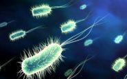 Νέο όπλο εναντίον ανθεκτικών βακτηρίων