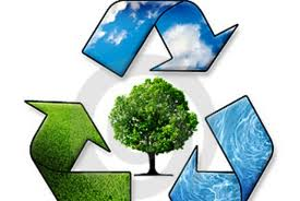 Ανακύκλωση των φυσικών Χριστουγεννιάτικων δέντρων