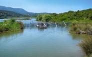 Η όμορφη «λίμνη των κρίνων»
