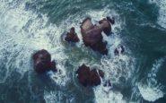 Εφιαλτικές προβλέψεις για την άνοδο της στάθμης των θαλασσών