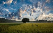 Ποια είναι τα οφέλη από την επαφή μας με τη φύση;