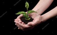 Μια «φωτογραφία» Αγροτικής Ανάπτυξης