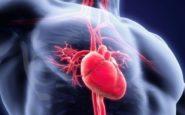 Ιστορικό ιατρικό επίτευγμα: Έκαναν μεταμόσχευση καρδιάς από νεκρό δότη