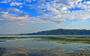 Λίμνη Κερκίνη: Ένας τεχνητός παράδεισος σας περιμένει…