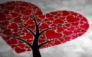 ΔΗΜΟΣ ΩΡΑΙΟΚΑΣΤΡΟΥ: Αρωγός στην εθνική προσπάθεια για ενίσχυση της εθελοντικής αιμοδοσίας
