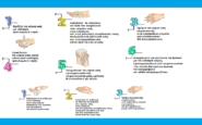 Κορωνοϊός: Τα βήματα για τη σωστή υγιεινή των χεριών