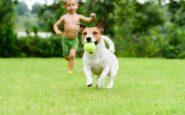 Έρευνα για τα παιδιά που μεγαλώνουν με σκύλο