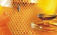 Προσοχή! Με φυτοφάρμακο 3 στα 4 μέλια