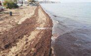 Η διάβρωση «καταπίνει» τις ακτές της ανατολικής Θεσσαλονίκης (φωτογραφίες)