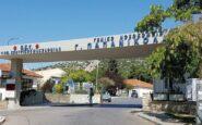 Παπανικολάου: Σε 2 μήνες τα αποτελέσματα στην έρευνα για τη θεραπεία τουκορονοϊού