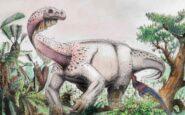 Περίπου 2,5 δισ. τυραννόσαυροι ήταν στη Γη την εποχή των δεινοσαύρων