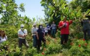 """Με Παιώνιες Δυνάμεις στην Κράστα, και το SOS Βέρμιο, 8/5/2021 """"Αιολικές"""" Δράσεις Βερμίου, Κατά των Ανεμογεννητριών!"""